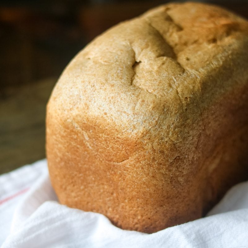 Easy Whole Wheat Bread Recipe that is egg free and dairy free