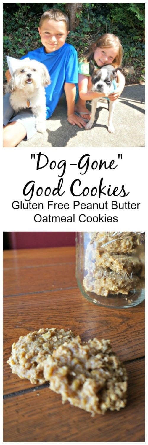 4 ingredients is all it takes to whip up homemade dog treats that are sure be to loved by the humans as well.