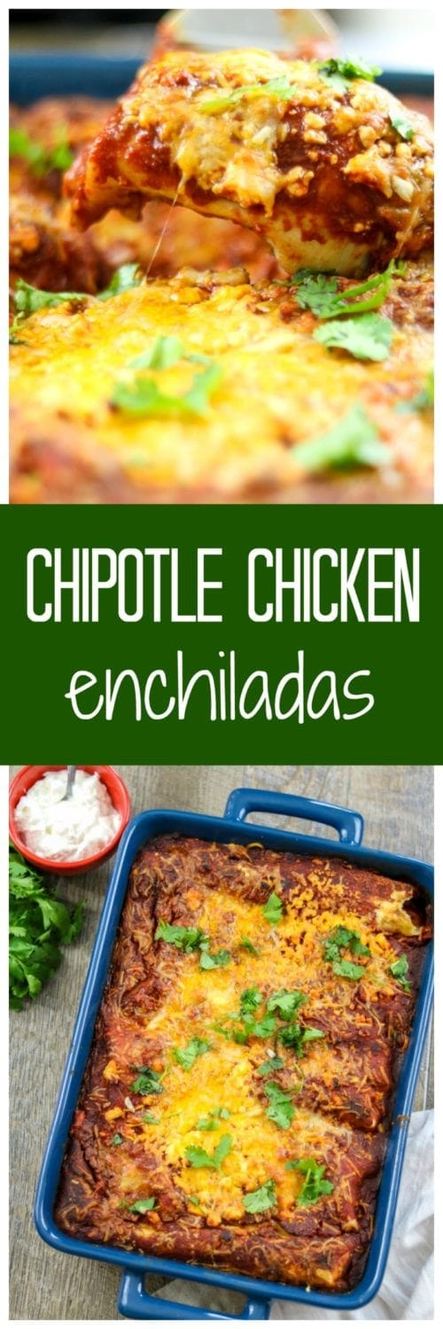 Chipotle Chicken Enchiladas: Tortillas that have been filled with moist, shredded chicken are submerged in rich Enchilada sauce and then smothered in cheese for an easy, family meal worthy of any Mexican Restaurant. Gluten-Free Option available. Recipe for Homemade Enchilada Sauce included.