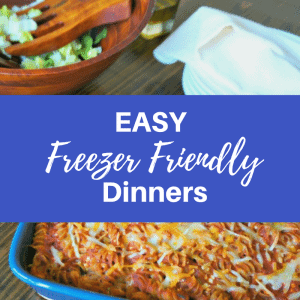 Easy and Healthy Freezer Friendly Meals