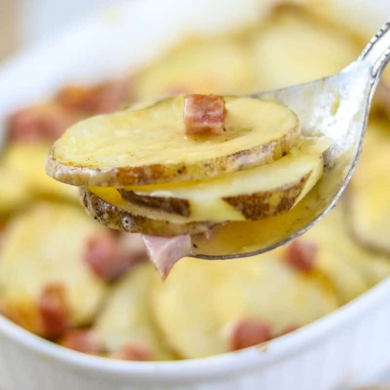 Scalloped Potatoes with Ham: Leftover ham shines in a simple gratin made with sliced potatoes and a homemade sharp cheddar cheese sauce.