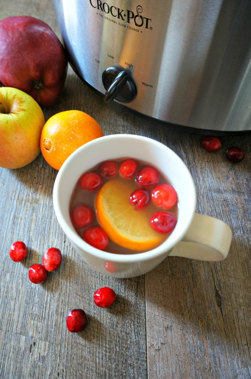 Orange and Cranberry Cider that has been mulled with the natural sweetness from pineapple juice and cinnamon and nutmeg.