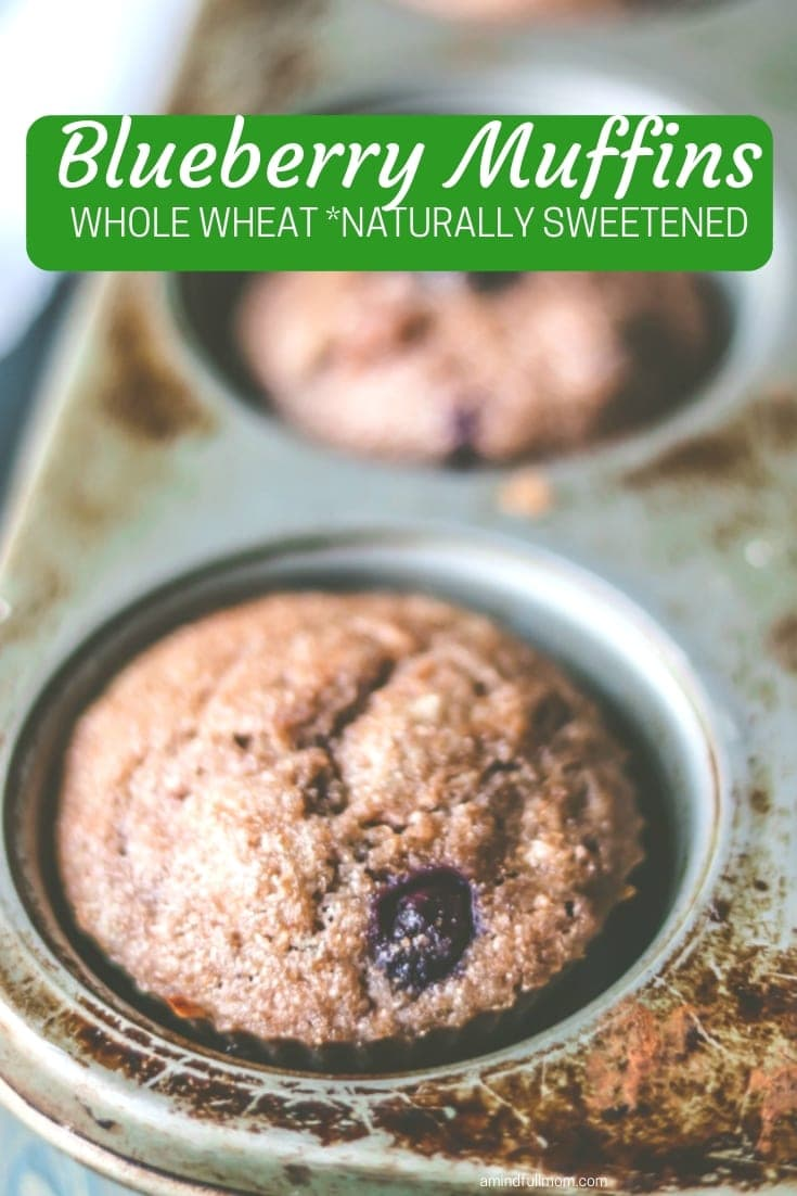 100% Whole Wheat Naturally Sweetened Blueberry Muffins: Tender muffins that are jam packed full of blueberry and a secret ingredient that amps up the blueberry flavor. They are naturally sweetened and dairy-free. These muffins are so good, they will soon be a staple in your house! #muffin #healthy #wholewheat #dairyfree