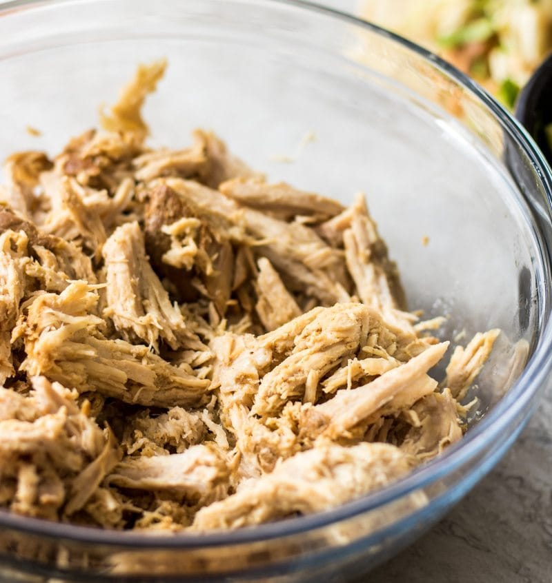 Shredded Pork Carnita Meat: pork is tenderized with orange juice, beer, and spices for a perfect base for so many dishes.