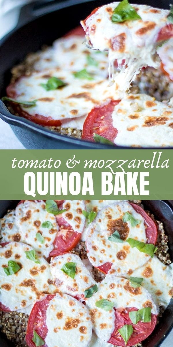 Seasoned quinoa is baked with vine-ripened tomatoes and fresh mozzarella for a simple vegetarian and gluten-free summer meal. Made with simple Italian flavors, and ripe, juicy tomatoes, this easy recipe is full of protein, nutrients, and flavor.
