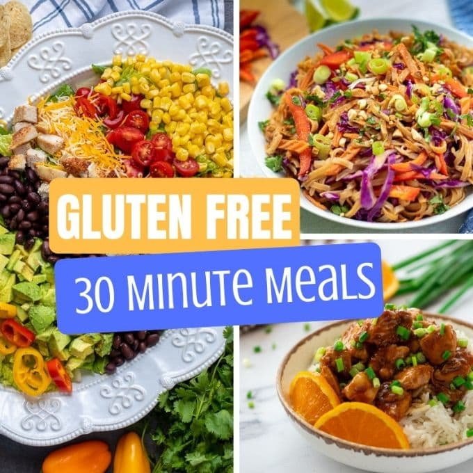 Easy Healthy Gluten Free 30 Minute Meals: Pork, Chicken, Seafood, Beef and Meatless Meals made in 30 minutes that your family will love.