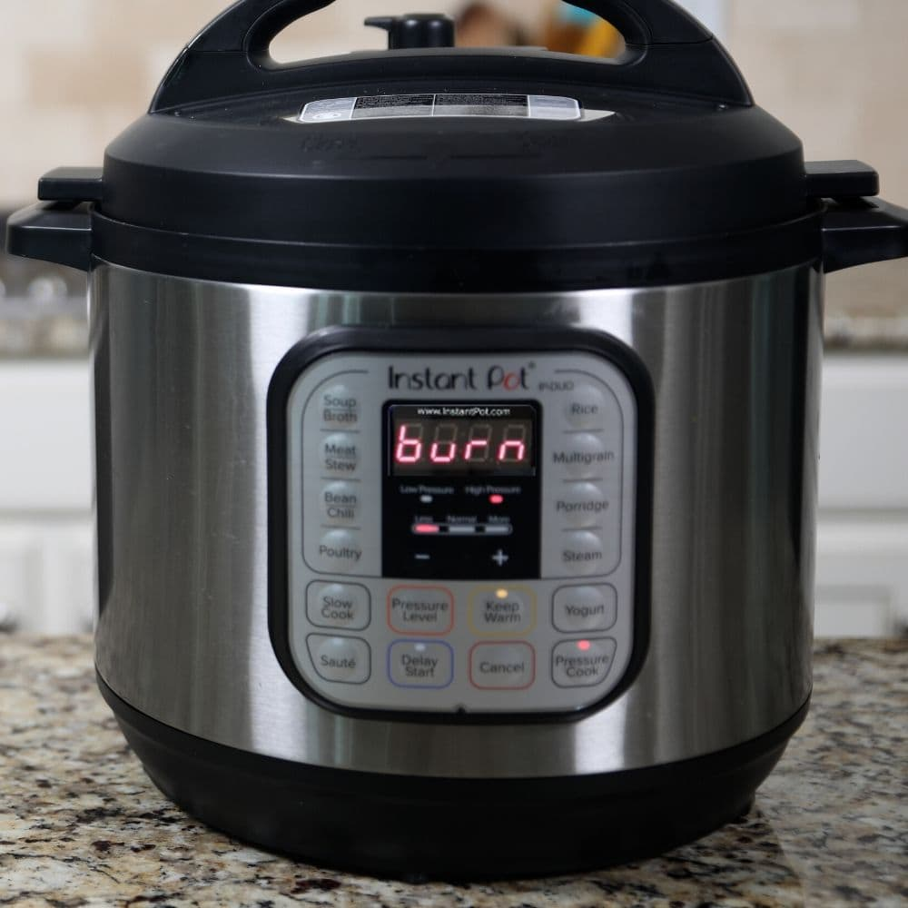 Instant Pot with Burn Notice on front panel