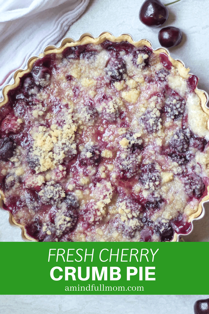 Cherry Crumb Pie: The best cherry pie recipe ever! Fresh cherries are combined with a sweet sour cream custard and then baked with a buttery crumble topping for a cherry pie no one can resist.