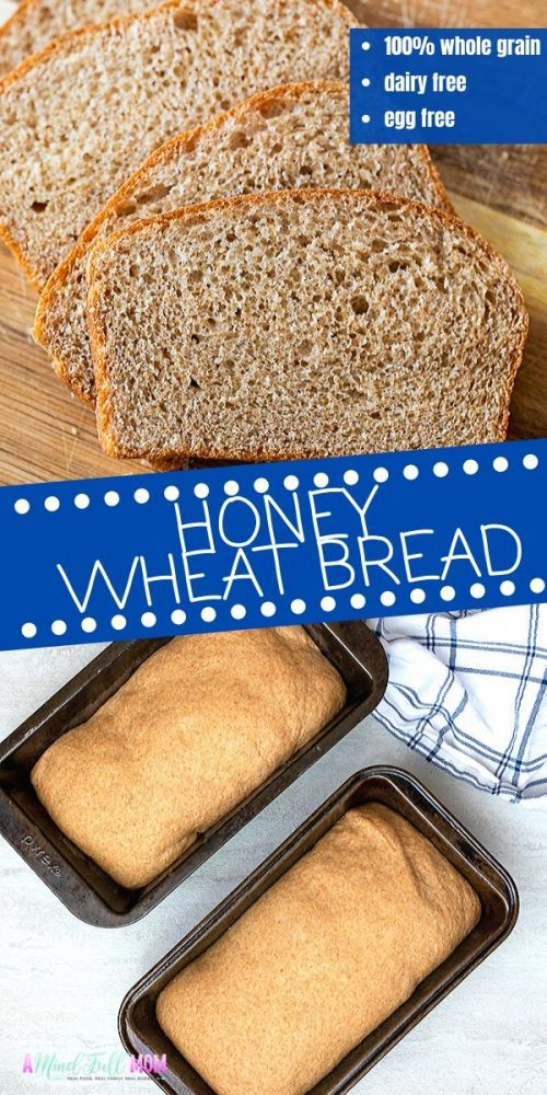 If you think whole wheat bread is dense or tastes like cardboard, you have NOT tried my recipe for Honey Whole Wheat Bread. This recipe for whole wheat bread is soft, tender, and full of flavor. It is everything you crave in good bread, while still being 100% whole wheat!