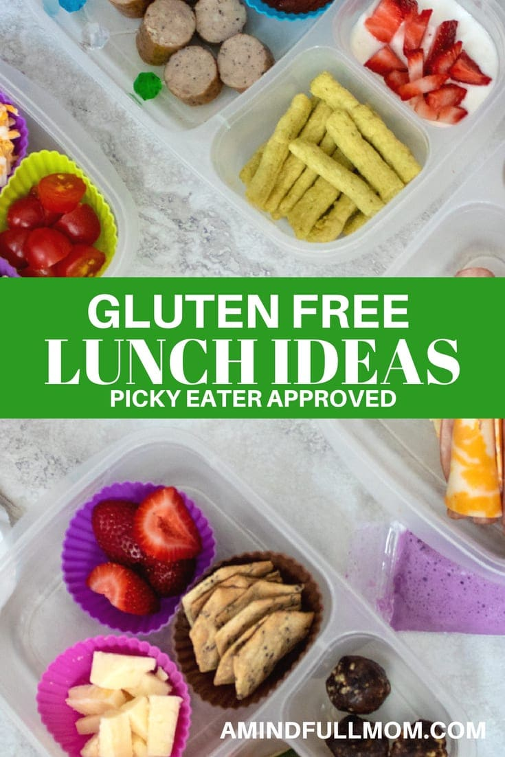 Lunch Box containers with gluten free lunches and text that reads Healthy Gluten Free Lunch Ideas