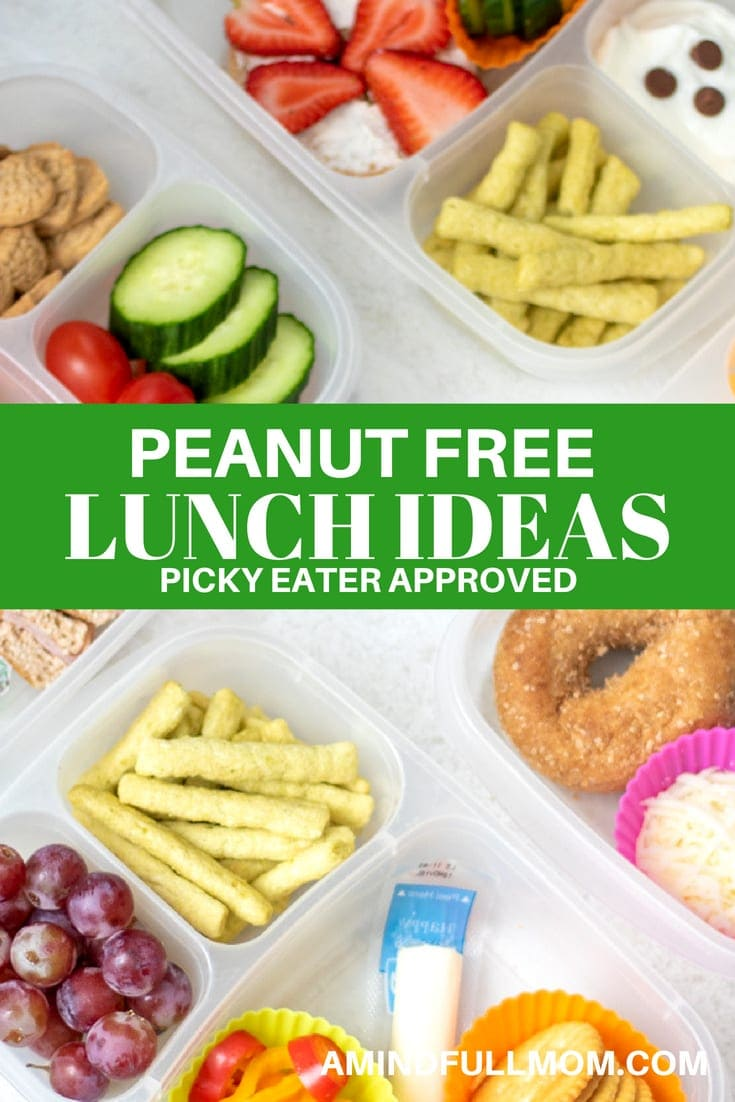 Nut free school lunch ideas