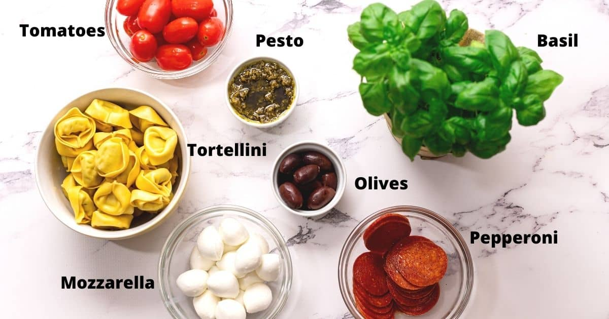 Ingredients for Antipasto Skewers labeled on white counter.