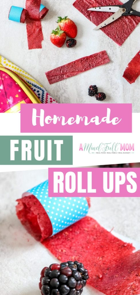 A 3-ingredient easy homemade fruit roll-up recipe ready in 5 minutes! They are the perfect healthy lunch box treat for your kids. Stop buying the sugary fruit roll-ups and start making one!