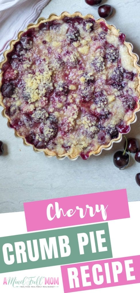 The best cherry pie recipe ever! Fresh cherries are combined with sweet sour cream custard and then baked with a buttery crumble topping for a homemade cherry crumb pie no one can resist. Plus, you can also make cherry crumb pie with frozen cherries!