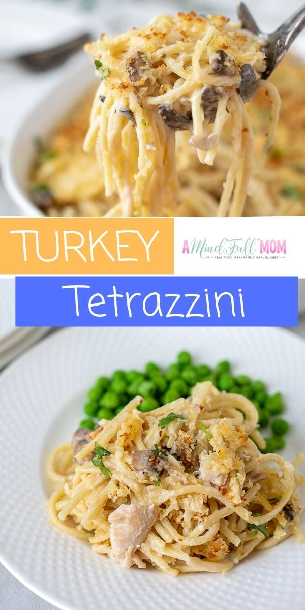 Turkey Tetrazzini is a perfect way to use up leftover Turkey. This comforting classic pasta dish is made with chunks of turkey, mushrooms, a homemade Parmesan Cream Sauce, and a crispy bread crumb topping. But don't limit this easy dinner recipe to just turkey--use leftover chicken or ham as well for a comfort food recipe your family is sure to love.