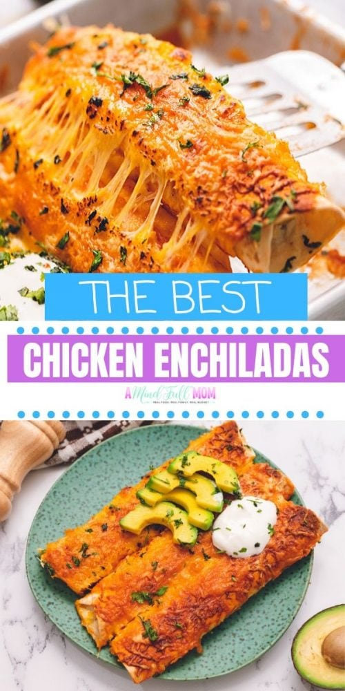 These Chicken Enchiladas are the best version of Chicken Enchiladas and they are also the easiest--especially if you prepare with leftover rotisserie chicken. This simple Mexican recipe is a perfect weeknight family family.