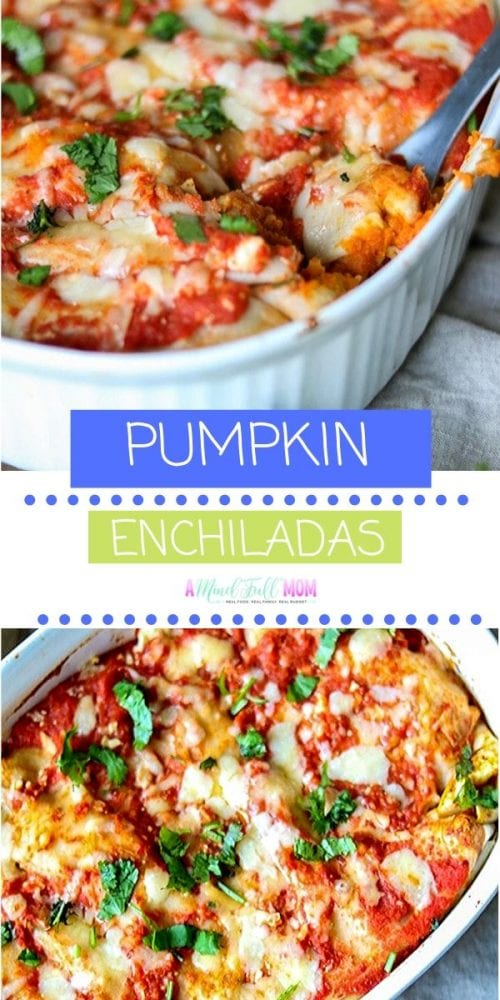 Pumpkin enchiladas are a vegan and gluten-free fall recipe for dinner made of pumpkin puree and refried beans tossed with homemade enchilada sauce! This simple, economical and healthy, Vegan Pumpkin Enchilada recipe is the perfect meal that can save your day! Pumpkin Enchiladas may sound like an odd combination--but it works! Pumpkin puree and refried beans come together with a homemade enchilada sauce to create and easy, flavorful, and healthy family dinner.