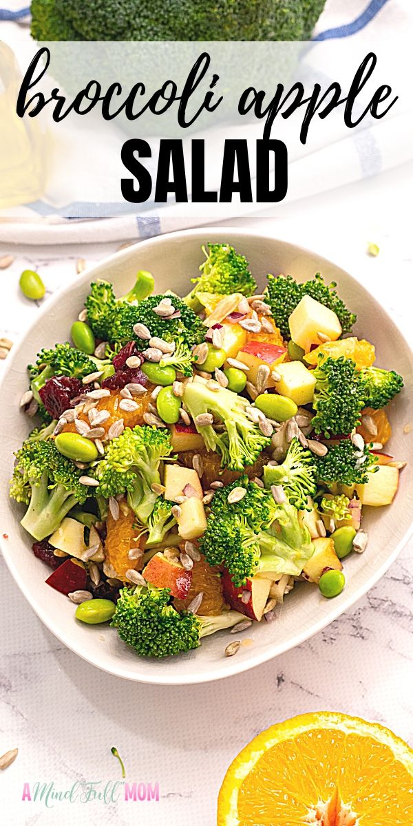 This Broccoli Salad is bursting with flavor! Packed full of broccoli, apples, oranges, edamame, sunflower seeds, dried cranberries, and a fresh orange dressing - it is the BEST Broccoli Salad--PERIOD! It makes the perfect addition to any potluck, BBQ, or party!