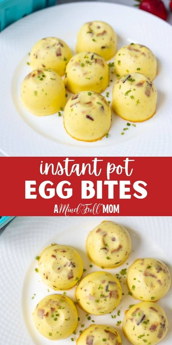Skip the expensive drive-thru and make your own egg bites EASILY in the Instant Pot and customize them with whatever filling you like. Instant Pot Egg Bites are a copycat version of Starbuck's Soude Vide Egg Bites. They are light, fluffy, creamy, and incredibly easy to make at home!