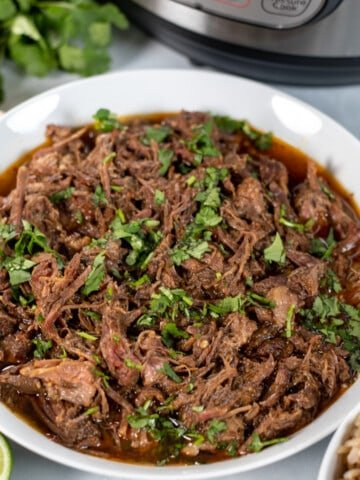 Bowl of Instant Pot Beef Barbacoa.