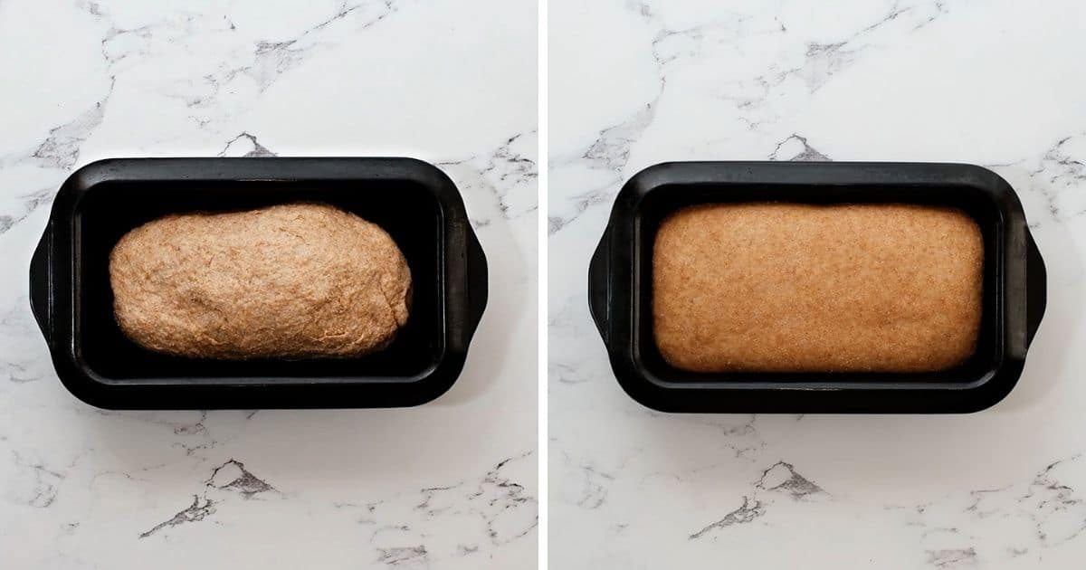 Side by side photo of bread dough in loaf pan before and after rising.